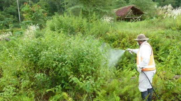 Weed spraying PNG (2) (640x480)